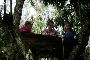 Homeschool in Treehouse